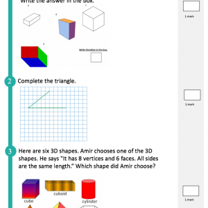 SATs Companion Maths Test Ks2